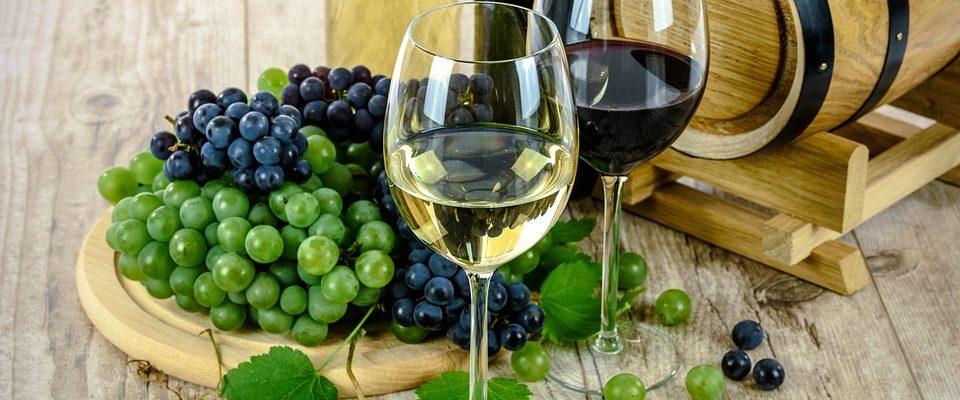 víno k menším pokrmům
