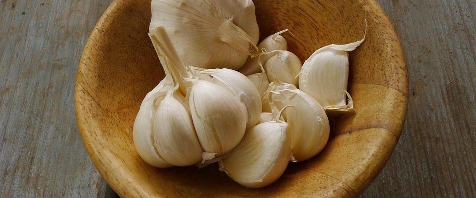 Česnek je zdraví prospěšný. Jaké jsou jeho účinky?